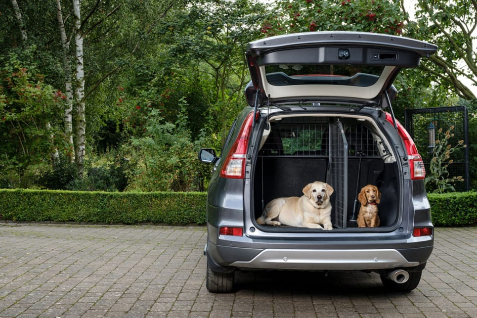 Dog Car Barrier - The Best Cargo Divider for Your Car - Car