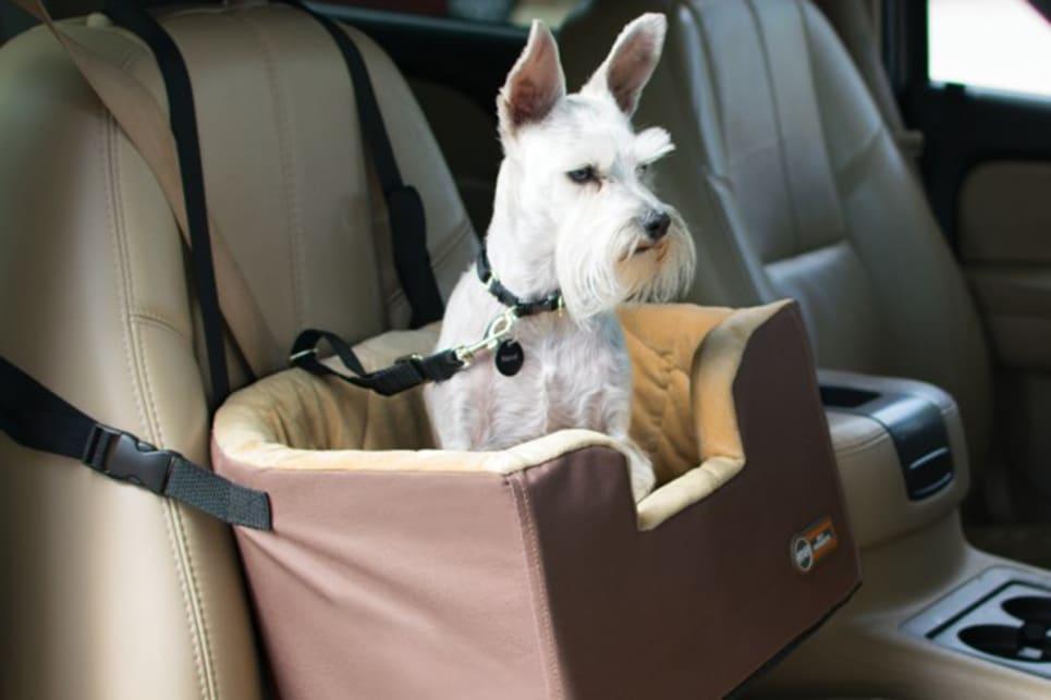 Dog Car Seats Australia - Guide & Reviews - Car Advice ...